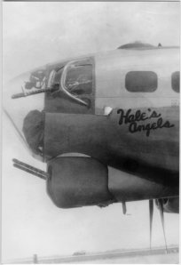 Hale's Angels, Aircraft 42-102449